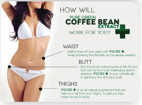 Green Coffee Bean Max For Quick Weight Loss Home